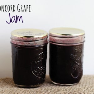 Concord Grape Jam – Canning adventures
