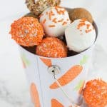 Cream Cheese Carrot Cake Cake Pops & Giveaway