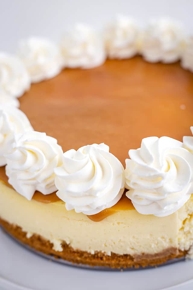close up of whipped cream on top of butter rum cheesecake