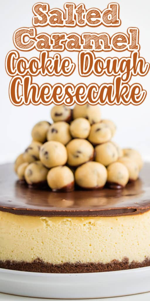 pinterest closeup whole cheesecake photo with text