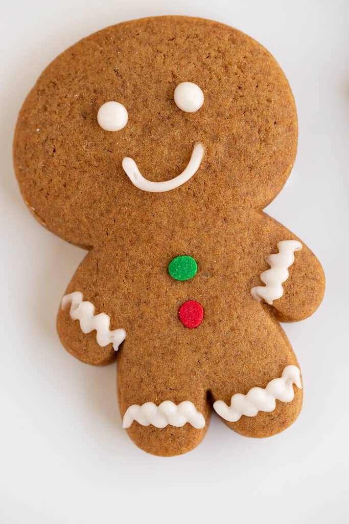 upclose image of a decorated gingerbread cookie